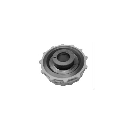 image365   Kuicly